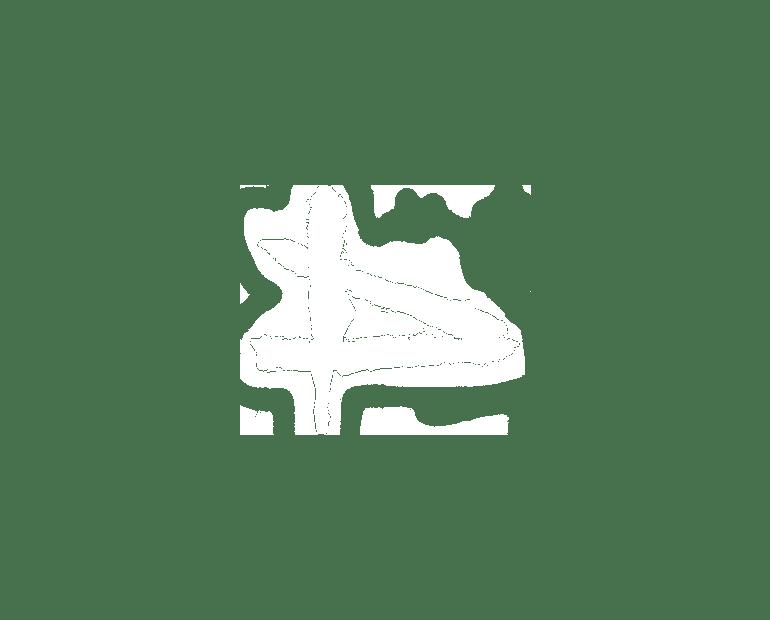 david-gart-logo
